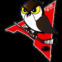Logo alleghe