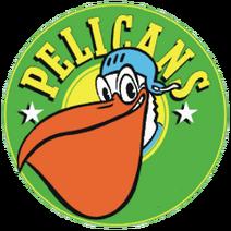 Logo pelicans2