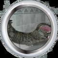 Badge-625-3.png