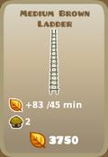 Medium Brown Ladder