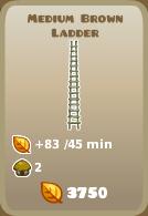 File:Medium Brown Ladder.png