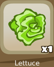 File:Collections greens lettuce.png