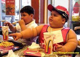 Mcdonalds stop obesity