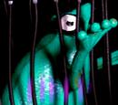 Frog Prisoner
