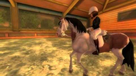 Star Stable-0