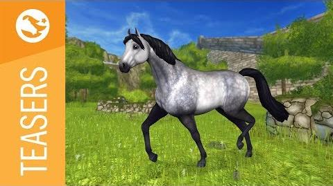 Star Stable Teasers - The Connemara