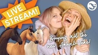 LIVE STREAM - BUYING ALL THE NEW AKHAL-TEKE 😍😍🐎