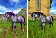 Jorveskie Dzikie konie 3