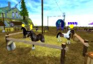 Threehorses-1