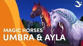 Meet Umbra and Ayla! 🌓✨