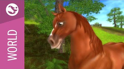 Star Stable World - Westphalian Horse
