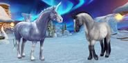 Dziki Koń Jorveski - Mroźny, Niebieski deresz
