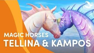 Meet Tellina and Kampos 🐟🐚😍