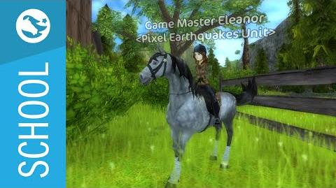 Star Stable School - Game Masters & Safe Accounts