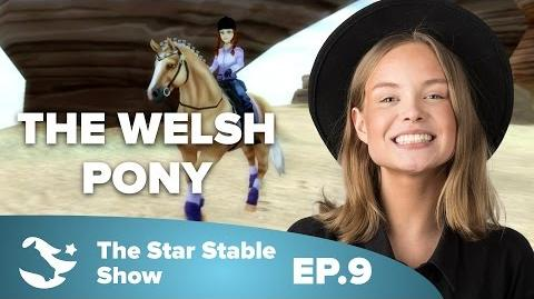 The Welsh Pony - The Star Stable Show -2.9