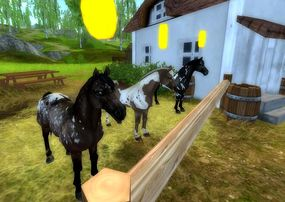 Newest Paint Horses on Star Stable Online-0