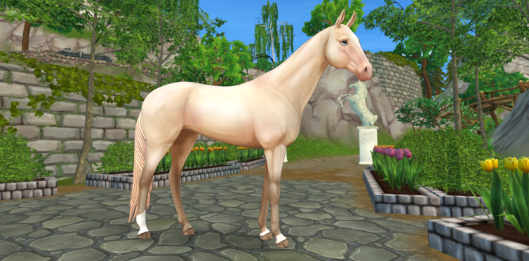 Akhal-Teke | Jorvikipedia | FANDOM powered by Wikia