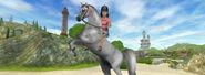 Arabians296header
