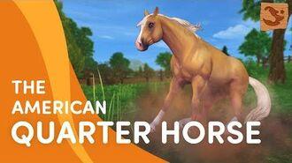 Meet the UPDATED American Quarter Horse 😍🐎💨