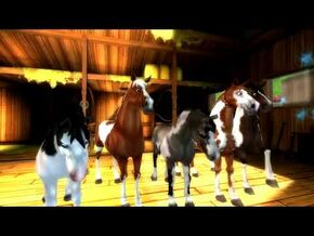 Star Stable World - American Paint Horse