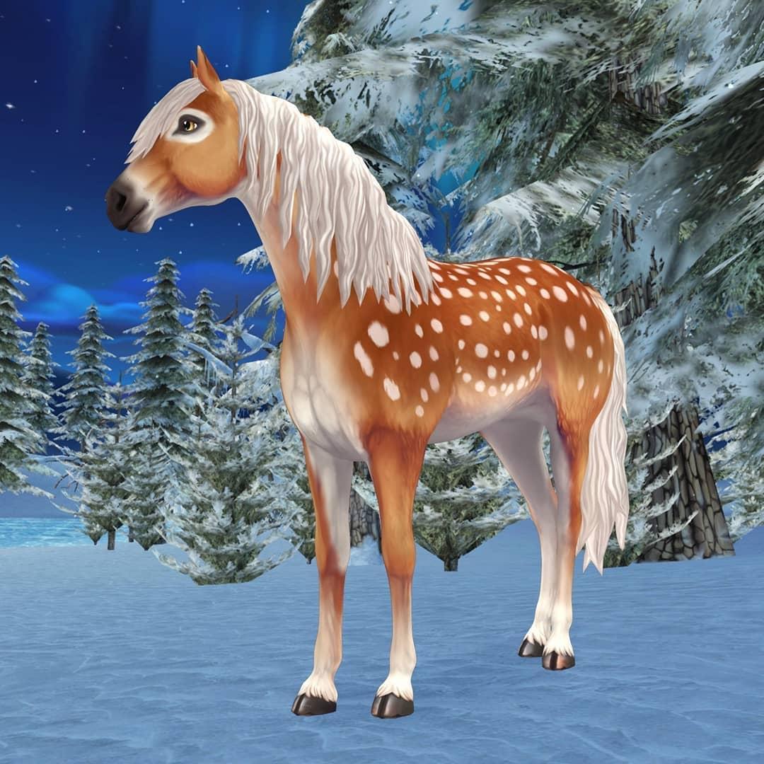 star stable white tinker