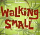Walking Small (Episode)