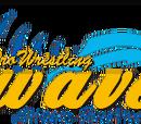 Pro Wrestling WAVE
