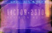 Victor screen