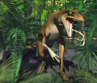 Raptor in artificial environment