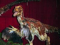 Crimsonraptor
