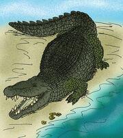 Deinosuchus color