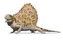 Dimetrodon-0