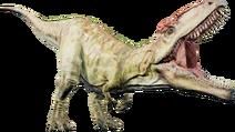 Gigatnotosaurus