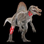 Wounded spino t99