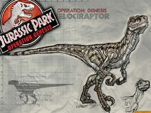 Velociraptor W