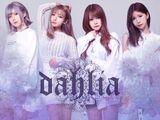 DAHLIA (Band)