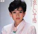 Kanashii Yokan (Okada Yukiko)