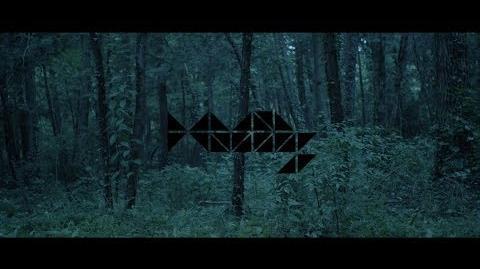 HAMIDASYSTEM - 蝉の声 (Official Music Video)