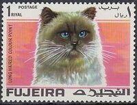 Fujeira 1967 Cats d