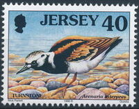 Jersey 1998 Seabirds and waders (2nd Issue) f