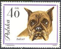 Poland 1963 Dogs c