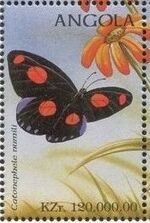 Angola 1998 Butterflies (2nd Group) d