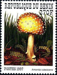 Benin 1997 Mushrooms d