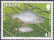 Jersey 2010 Jersey Nature - Freshwater Fish c
