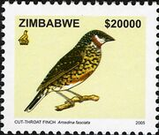 Zimbabwe 2005 Birds from Zimbabwe e