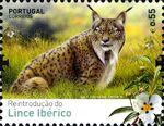 Portugal 2015 Reintroducing the Iberian Lynx into Portugal b