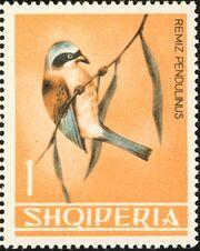 Albania 1964 Birds b