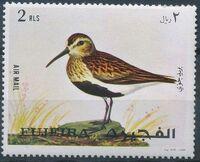 Fujeira 1971 European birds d
