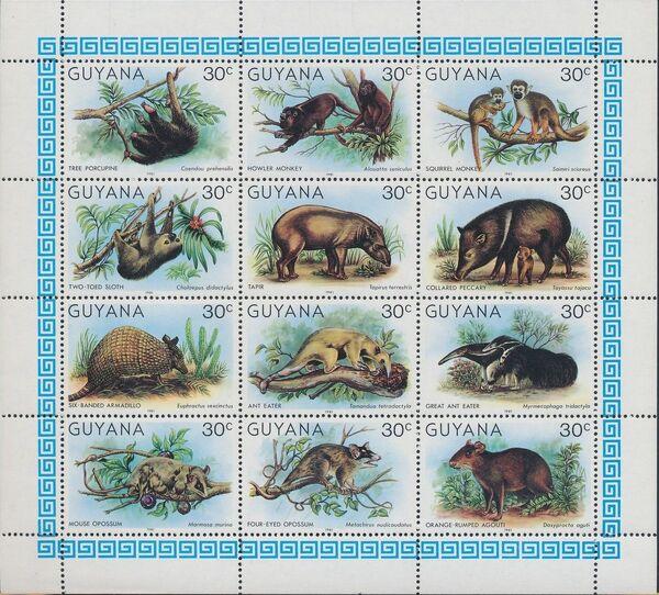 Guyana 1981 Wildlife SHa
