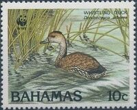Bahamas 1988 WWF - West Indian Whistling Duck b